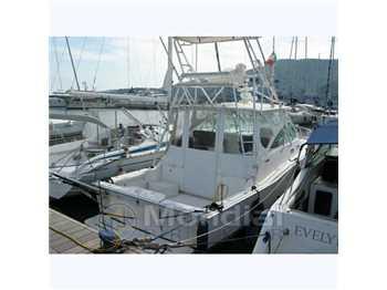 Cabo yacht - 35 express tuna tower