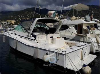 Cat harbor boats inc. - Cabo 31
